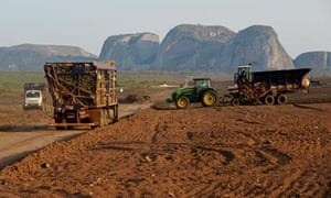 MDG : Agro- industry in Africa and large scale farming: sugar cane plantation in Angola