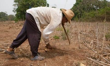 MDG : Farmer Victor Manuel Vasquez in Taxisco, Guatemala