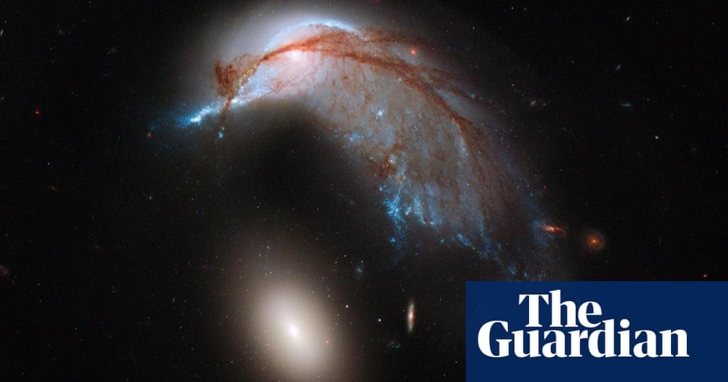 Hubble picks up a space penguin – big picture