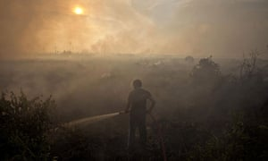 A firefighter braves the smoke caused by the forest fires in Riau Province, Indonesia