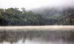 Morning fog over the Pieman River. Tarkine, North West Tasmania, Australia.