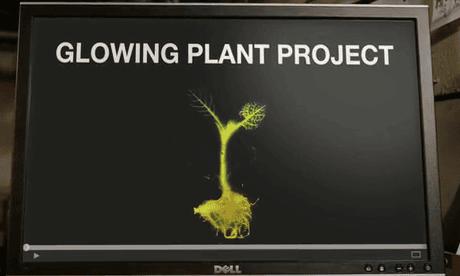Screengrab of Kickstarter synthetic biology project