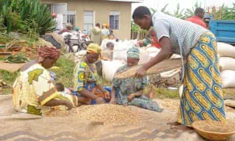 MDG : Earth Institute Partner : Ruhiira Millennium village in Uganda :