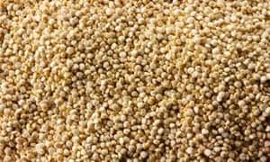 """""""MDG : Ancient cereals quiz : Quinoa grains"""""""