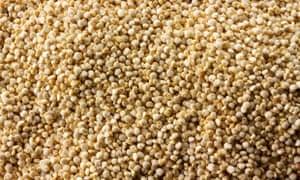 MDG : Ancient cereals quiz : Quinoa grains