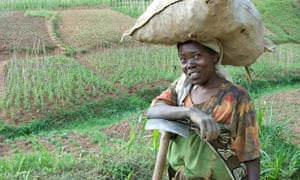 MDG farmer in Rwanda