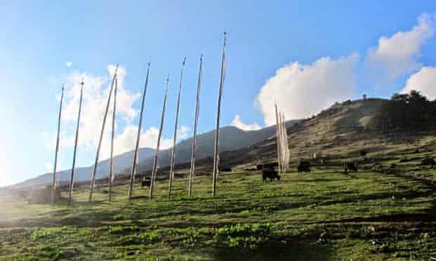 MDG fields near Ura village in Bhutan