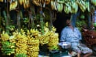 A fruit and vegetable market selling bananas
