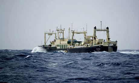 Japanese whaling vessel Nisshin Maru