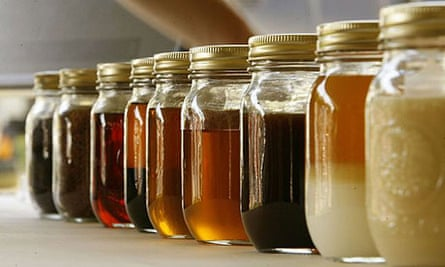 Biodiesel in different stages of production