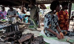 Bushmeat in Liberia