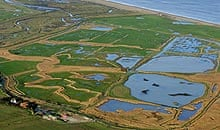 Cley Marshes Norfolk