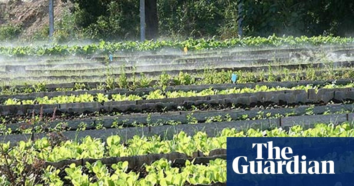 Cuba's organic revolution | Environment | The Guardian