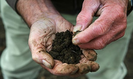A gardener holds some soil