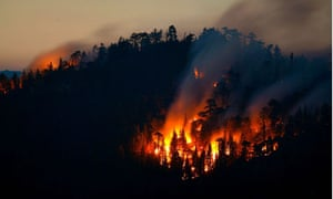 A wildfire burns in the Sequoia national forest, California