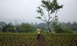 A farmer in El Salvador