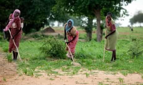 women farming a land near a camp for Internally Displaced Persons (IDP) in Gereida, South Darfur