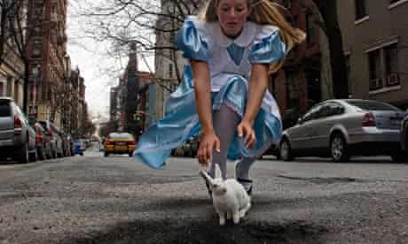 Potholes Alice in Wonderland