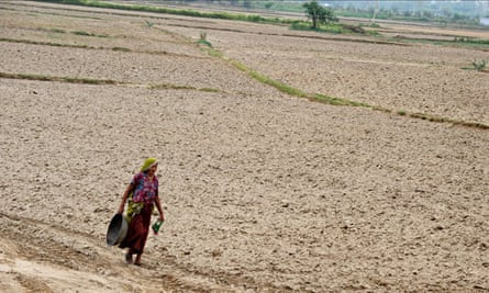 A woman farmer in the northern state of Haryana, India