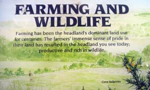 Yorkshire Wildlife Trust storyboard on farming and wildlife at Flamborough