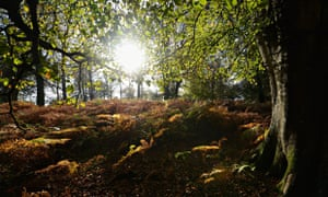 George Monbiot blog on nature and wellbeing green paper