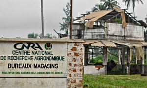 MDG : Soil quality and food security : National Centre for agronomic research in Ivory Coast, Africa