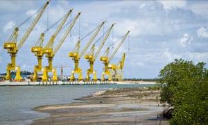 MDG : Suape port and shellfish fishing : Mangrove and cranes, Pernambuco, Brazil