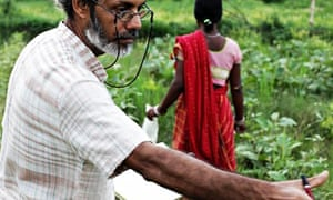 India's rice revolution | Global development | The Guardian