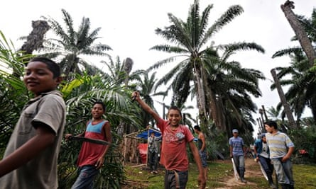 MDG : Honduras human rights abuses in Aguan valley palm oil plantation, MUCA members