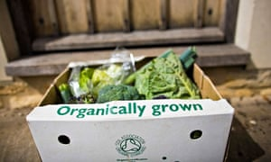 Organic food market :  Organic vegetable box delivered to the door