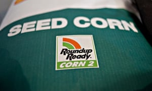 Genetically modified GM crop : Monsanto and Roundup weed killer
