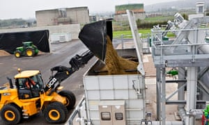 Maize for anaerobic digestion at  Severn Trent's crop fed power plant in Stoke Bardolph