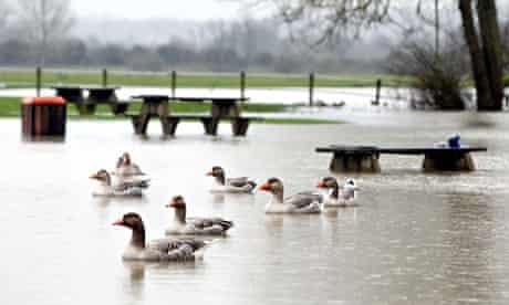 Green agenda election : Thames river burst out during floods