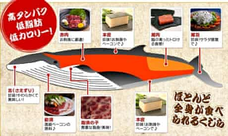 Japanese online shopping company offers whale meat to buy
