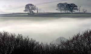 Country Diary : Morning mist beneath Norden Hill, Dorset