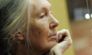 British primatologist and conservationist Jane Goodall