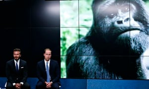 Britain's Prince William and Beckham launch a wildlife conservation campaign in London