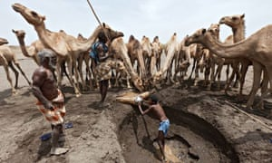 MDG : Climate change in Africa : drought in Ethiopia :