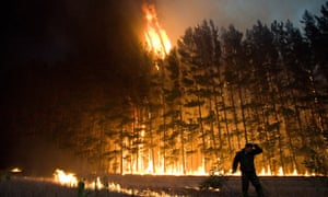 Forest fire near Dolginino, Russia