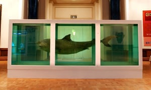 Damien Hirst's The Physical Impossibility of Death in the Mind of Someone Living (1991).