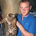 Wayne Rooney and a tiger