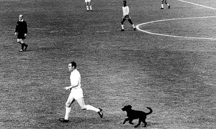 England's Ray Wilson is chased by Bi the dog, before the pup caught up with Jimmy Greaves