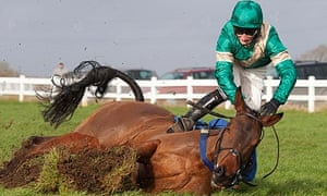 Daryl Jacob parts company with Valoroso after jumping the last fence in the lead at Wincanton