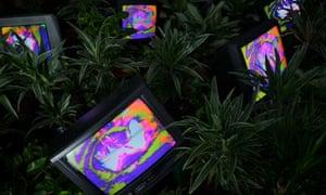 Nam June Paik's 'TV Garden'