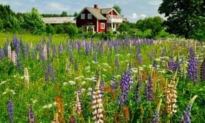 sweden farmhouse