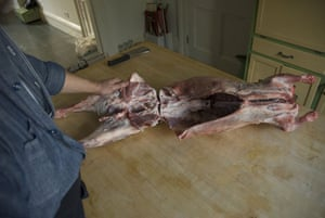 Gallery Butchering a lamb carcass: Make space to saw
