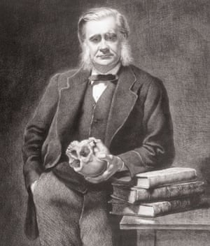 Gallery Darwin gallery: Thomas Henry Huxley