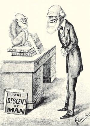 Gallery Darwin gallery: Cartoon of Darwin
