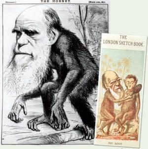 Gallery Darwin gallery: Cartoons of Darwin
