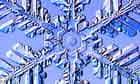 """A Fernlike Stellar Dendrite snowflake"""